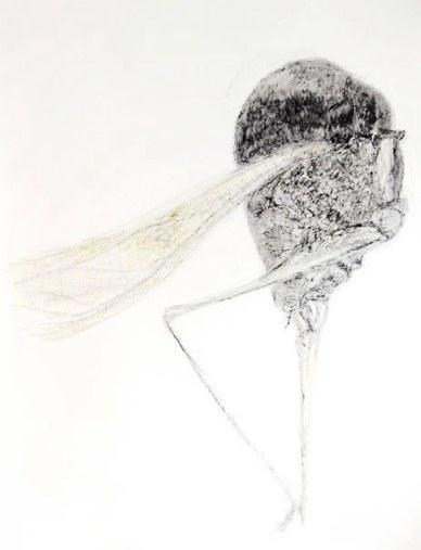 150*115 cm - 2006 Crayon à la cire et cire d'abeille sur papier