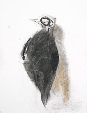 L'oiseau mouche 65*50 cm - 2006 Crayon à la cire sur papier